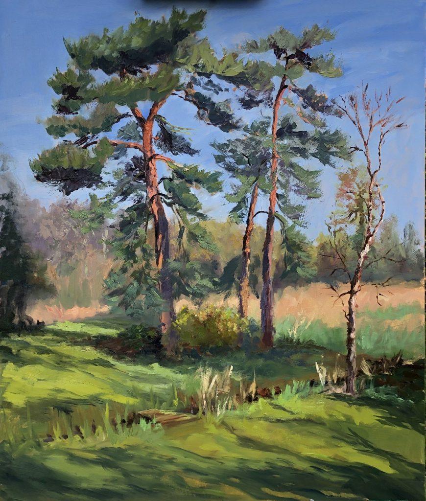 Light on Pines